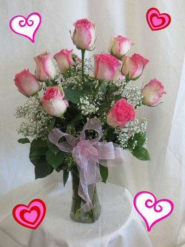 Perfectly Pink Dozen Valentine Roses by Enchanted Florist Pasadena TX. One dozen romantic variegated hot pink tipped crème roses designed by our talented design team. We also deliver in Houston, Deer Park, Friendswood, and more. RM902