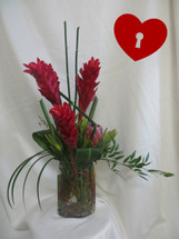 Red Hot Ginger Tropical Valentines Day Bouquet by Enchanted Florist Pasadena TX. Lovely tropical red ginger in a clear oblong vase with greenery accents. Includes lily grass, ti leaves and equisedum designed by our professional designers for a modern unique look. RM935