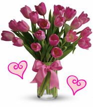 20 Pink Tulips for Valentines Day by Enchanted Florist Pasadena TX.  Twenty pink tulips are long lasting and a beautiful non traditional option for Valentines Day for when your special someone wants you to think outside the box. When pink is the only option this Valentines Day!  RM948
