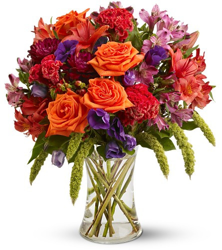 Gemma Fall Orange Bouquet by Enchanted Florist. Welcome fall with open arms and a festive bouquet of beautiful fresh flowers. Fronds of feathery millet and puffy, rooster-red coxcomb bring a touch of harvest color to a lovely mix of orange roses, burgundy dahlias and more, arranged in a graceful clear glass vase. A fine floral gift for friends, family or yourself. SKU: RM213
