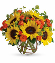 "Sunflowers and Orange Roses Fall Bouquet from Enchanted Florist. The sunflowers steal the show in this simple, yet beautiful arrangement. Also featured: mini orange spray roses, green bupleurum, salal leaves and a curly willow inside the glass bubble bowl. Approximately 12"" W x 12"" H SKU RM223"