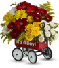 Baby Boys WOW Wagon by Teleflora is available for daily deivery by Enchanted Florist Pasadena TX in the Houston, Pasadena, Clear Lake, and surrounding areas. T35-1