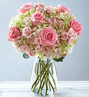 Blush Rose + Hydrangea Antique Green Bouqet