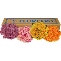 Rose Asst Colors 100 Stems