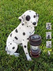 Dalmatian Dog With Solar Powered LED Lantern
