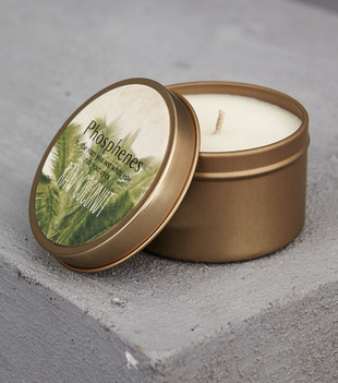 HAND POURED SOY CANDLE IN TRAVEL TIN - RAW COCONUT