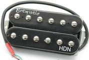 Entwistle HDN High Definition Neodymium Humbucker