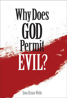 Why Does God Permit Evil?