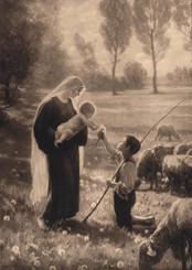 Gift of the Shepherd Christmas Card