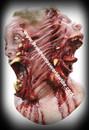 Deluxe Siamese Creature Monster Horror Mask Mascara