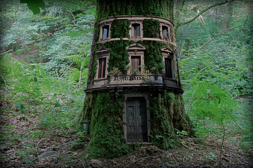 tree-house.png