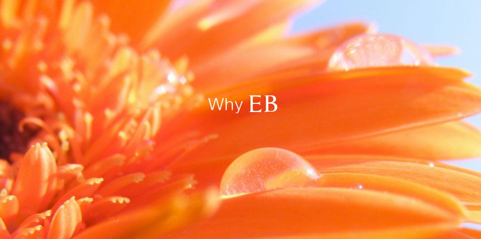 Why EB?