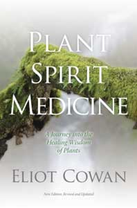 Plant, Spriit, Medicine