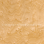 Birdseye Maple Veneer Deals At Birdseye Maple Veneer Outlet.com