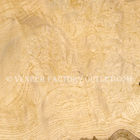 White Ash Burl Veneer At White As Burl Veneer Outlet.com