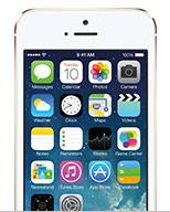 Apple iPhone 5s/5c/5 No Case