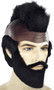 mr mister t wig and beard