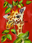 Winking Giraffe