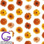 Large Print Flower Decal: Gerber Daisies