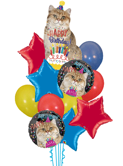 Have A Catty Birthday Balloon Bouquet Image 1 Loading Zoom