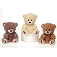 "9.5""  Sitting Paw Print Bear in 3 Assorted Colors"
