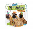 "18"" Happy Birthday From All Of Us Pugs"