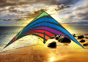 Dream On Stunt Kite