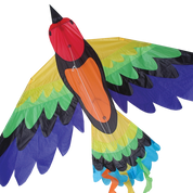 Rainbow Bird Bird Kite
