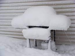 Propane tank snow damage