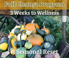 Fall Cleanse Program - 3 Weeks to Wellness (Soft Cover Book)