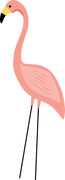 Flamingo #4 SVG Cut File
