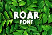 Roar Font