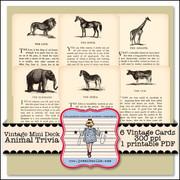 Vintage Mini Deck Animal Trivia
