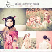 Lightroom Preset Soft Vintage