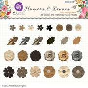 Engraver Flowers