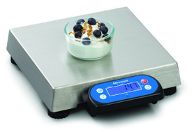 Avery-Brecknell (Weigh-Tronix), 6710U Scale Shown with Optional Display Mounting Bracket.
