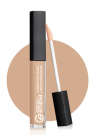 Amelia Liquid Concealer 02 Buy online in Pakistan on Saloni.pk