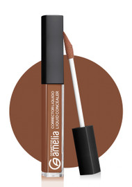 Amelia Liquid Concealer 06 Buy online in Pakistan on Saloni.pk