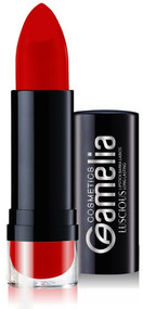 Amelia Long Lasting Lipstick 2120 Buy online in Pakistan on Saloni.pk