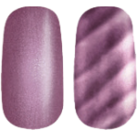 Golden Rose Magnetic Nail Lacquer 5