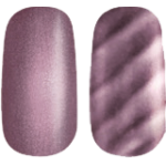 Golden Rose Magnetic Nail Lacquer 7
