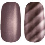 Golden Rose Magnetic Nail Lacquer 10
