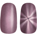 Golden Rose Magnetic Nail Lacquer 107
