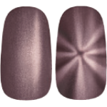 Golden Rose Magnetic Nail Lacquer 110