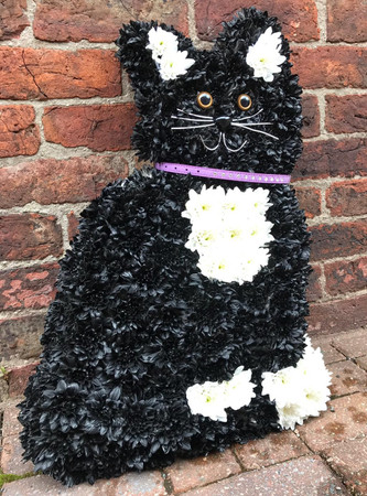A friendly looking 'cat' tribute. Other colour schemes are possible, please do not hesitate to contact our friendly team to discuss your requirements.