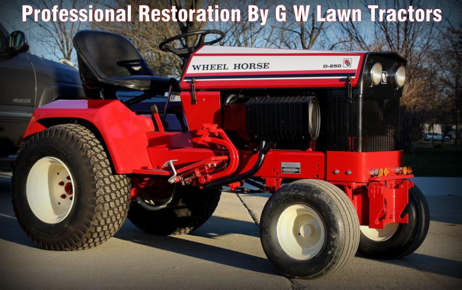 pro-restore-d-250.png