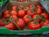 Truss Loose Tomatoes 2.5KG Product of Australia | Fairdinks