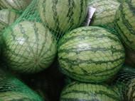 Mini Melon Twin Pack Product of Australia | Fairdinks
