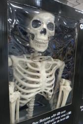Pose-N-Stay Skeleton 60 inch/ Metre With LED Eyes