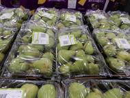 Snacking Pear (Corella) 2KG Product of Australia | Fairdinks